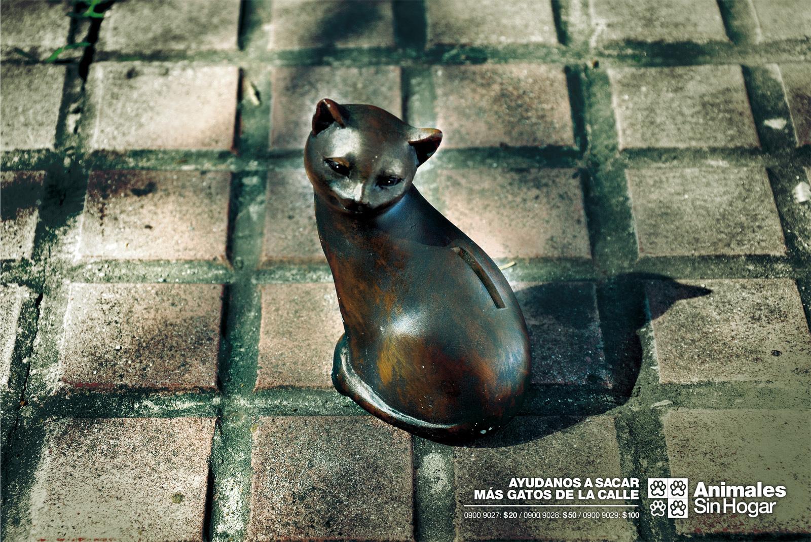 Animales Sin Hogar Print Ad -  Donations, Cat