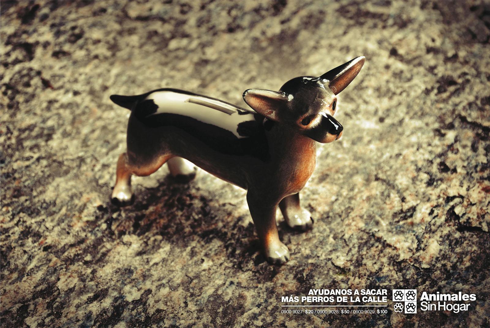 Animales Sin Hogar Print Ad -  Donations, Dog 1