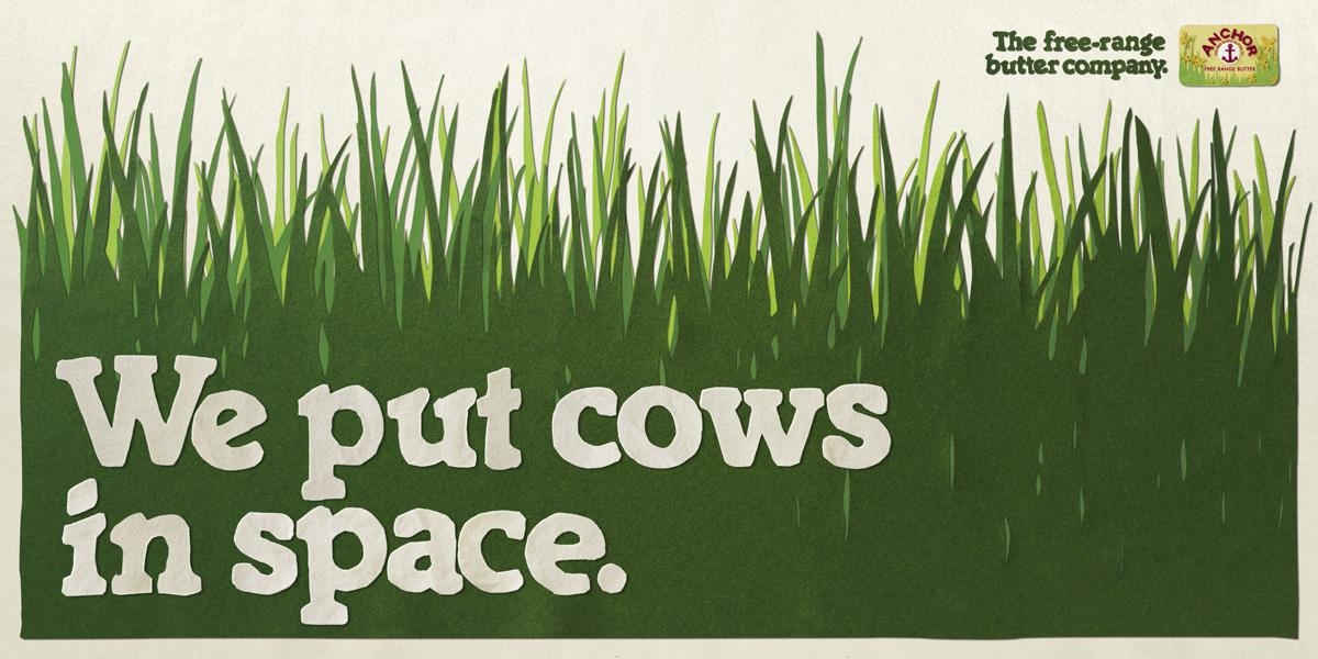 Anchor Print Ad -  Cows