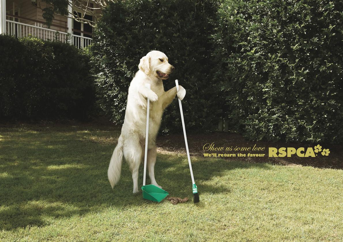 RSPCA Print Ad -  Clean up