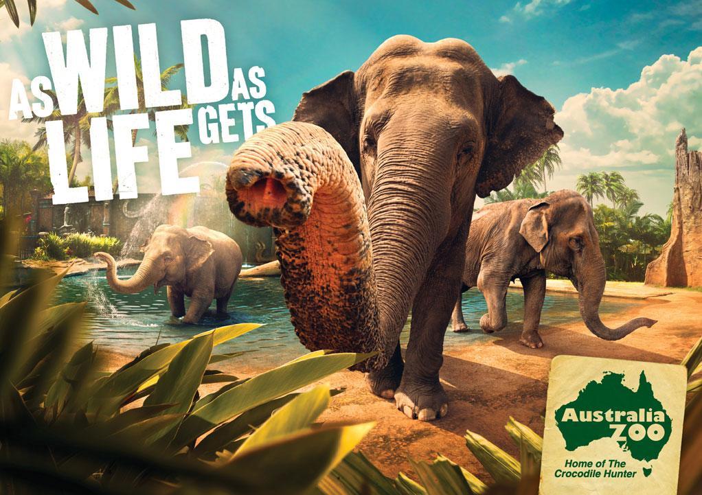 Australia Zoo Print Ad -  Elephants