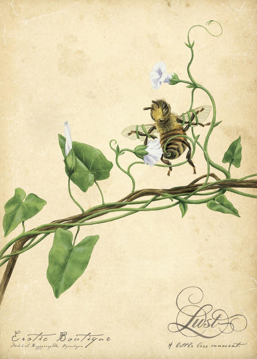 The flowers & the bees, 2