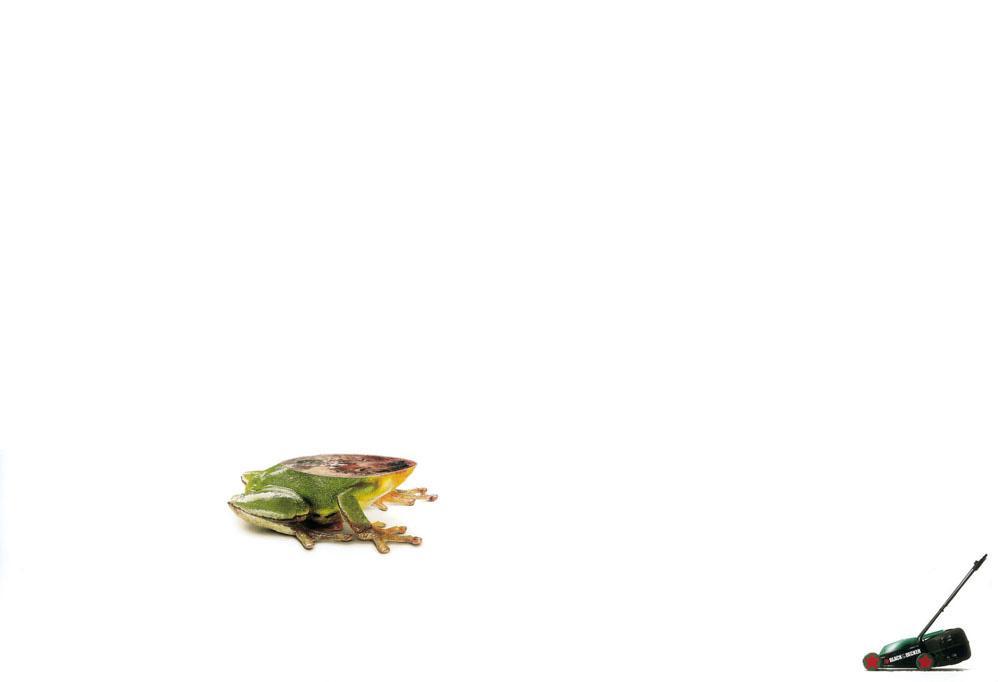 Black&Decker Print Ad -  Frog
