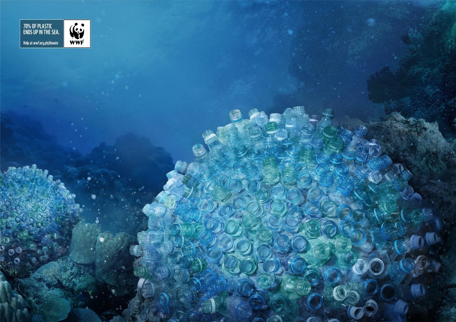 WWF Print Ad -  Brain Corals