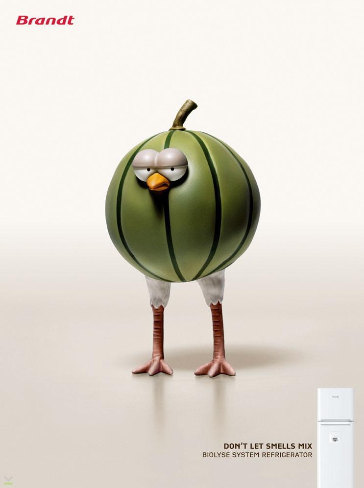 Melon chick
