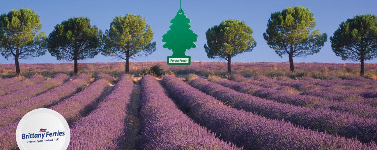 Brittany Ferries Print Ad -  Royal pine
