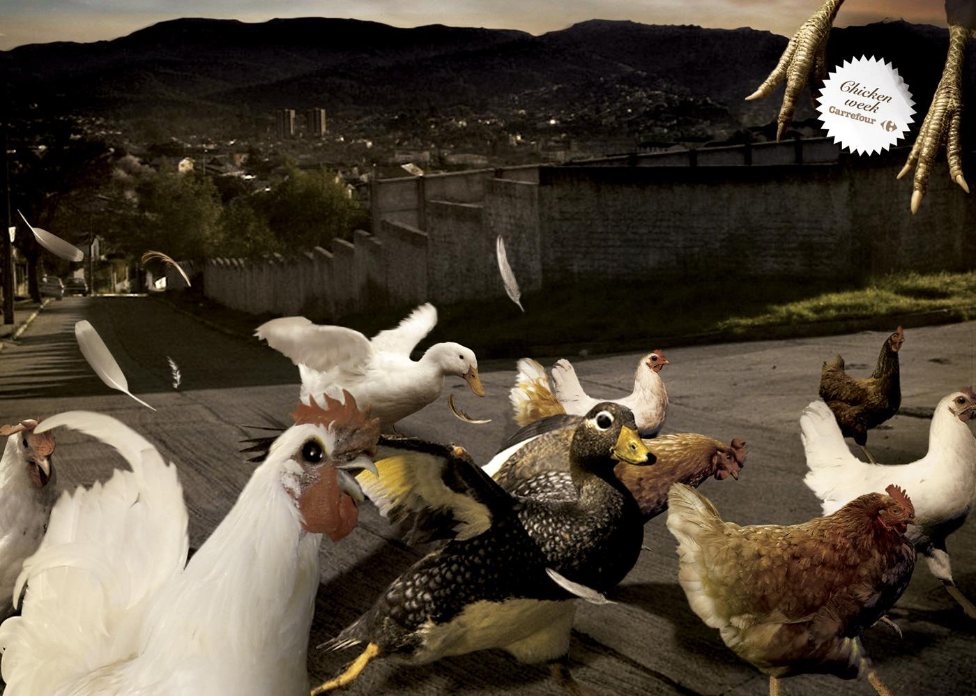 Carrefour Print Ad -  Chicken Week