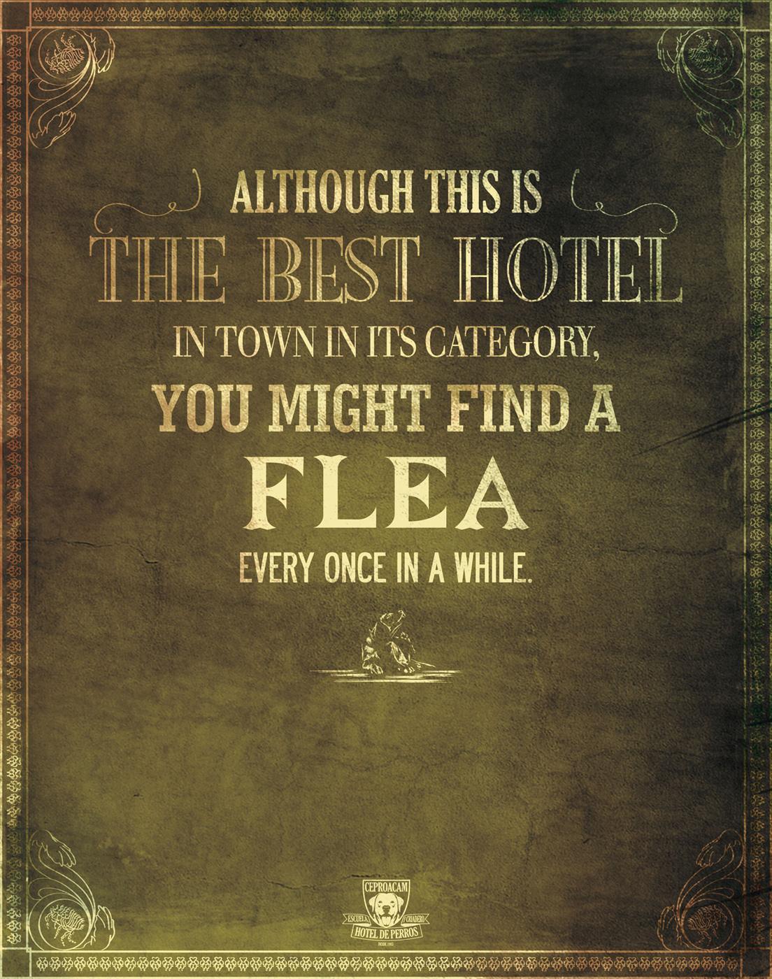 Ceproacam Print Ad -  Flea