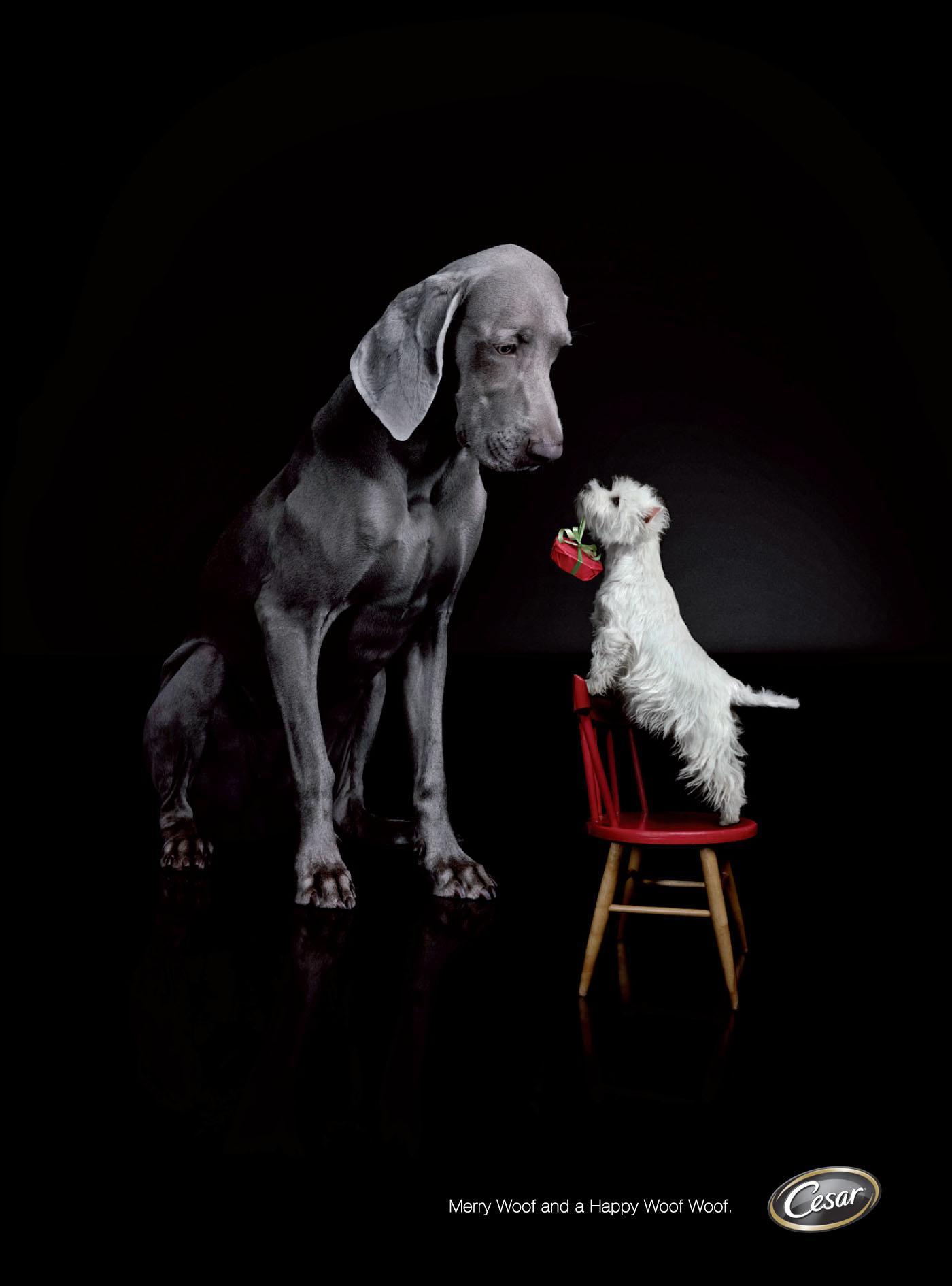Cesar Print Ad -  Merry Woof