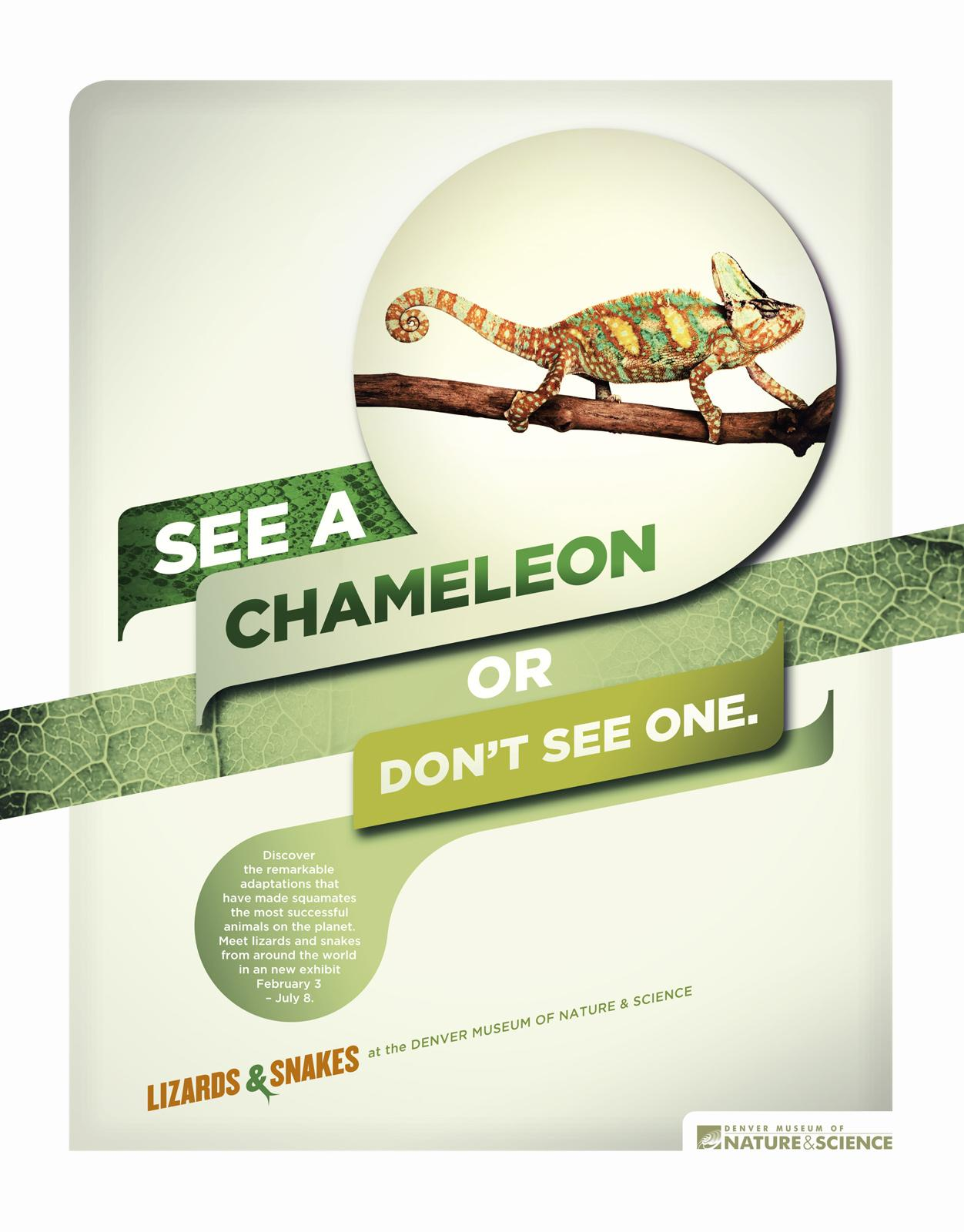 Denver Museum of Nature & Science Print Ad -  Chameleon