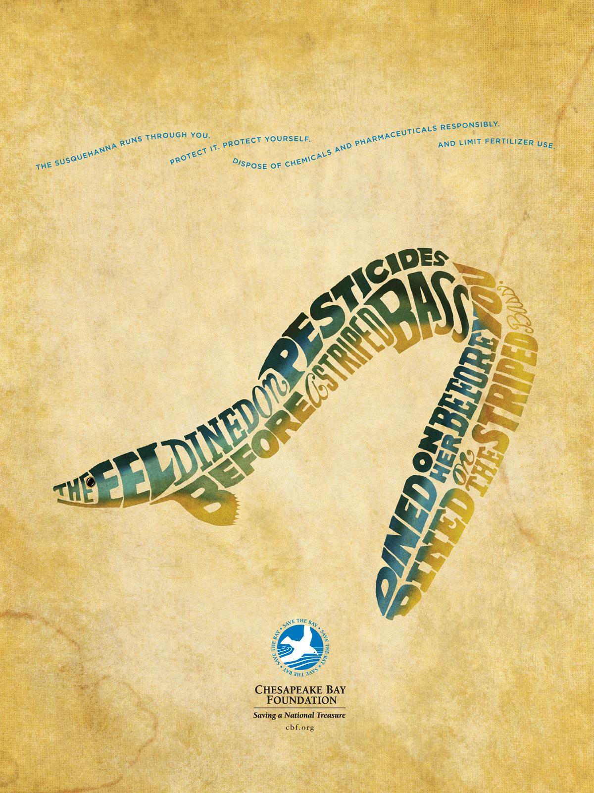 Chesapeake Bay Foundation Print Ad -  Eel CBF