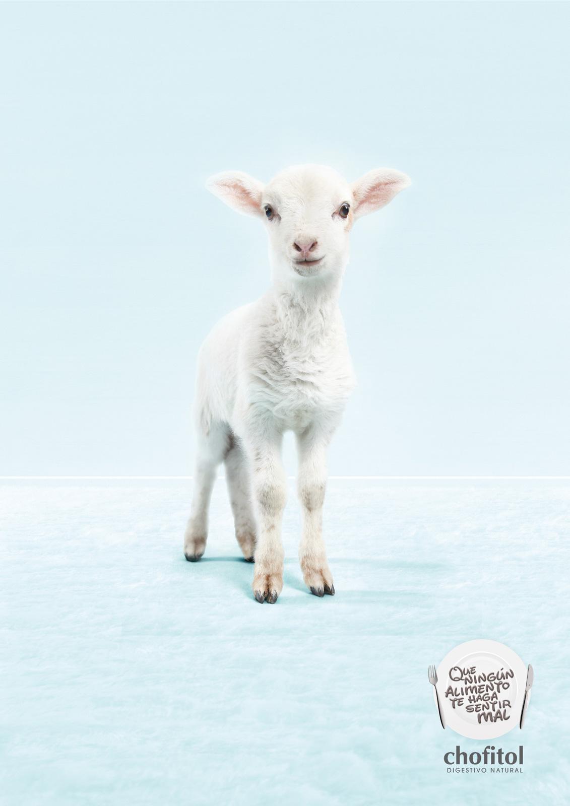 Chofitol Print Ad -  Digestivo Natural, Lamb