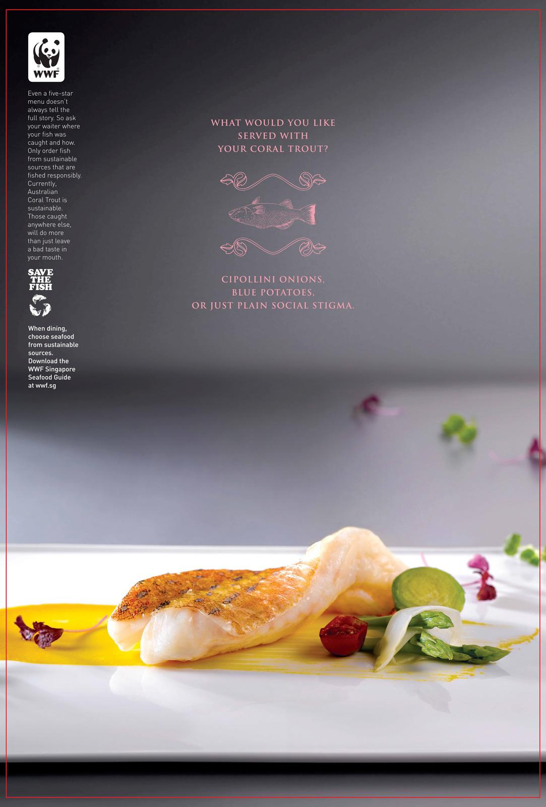 WWF Print Ad -  Enter the World of Sustainable Seafood, Coral trout