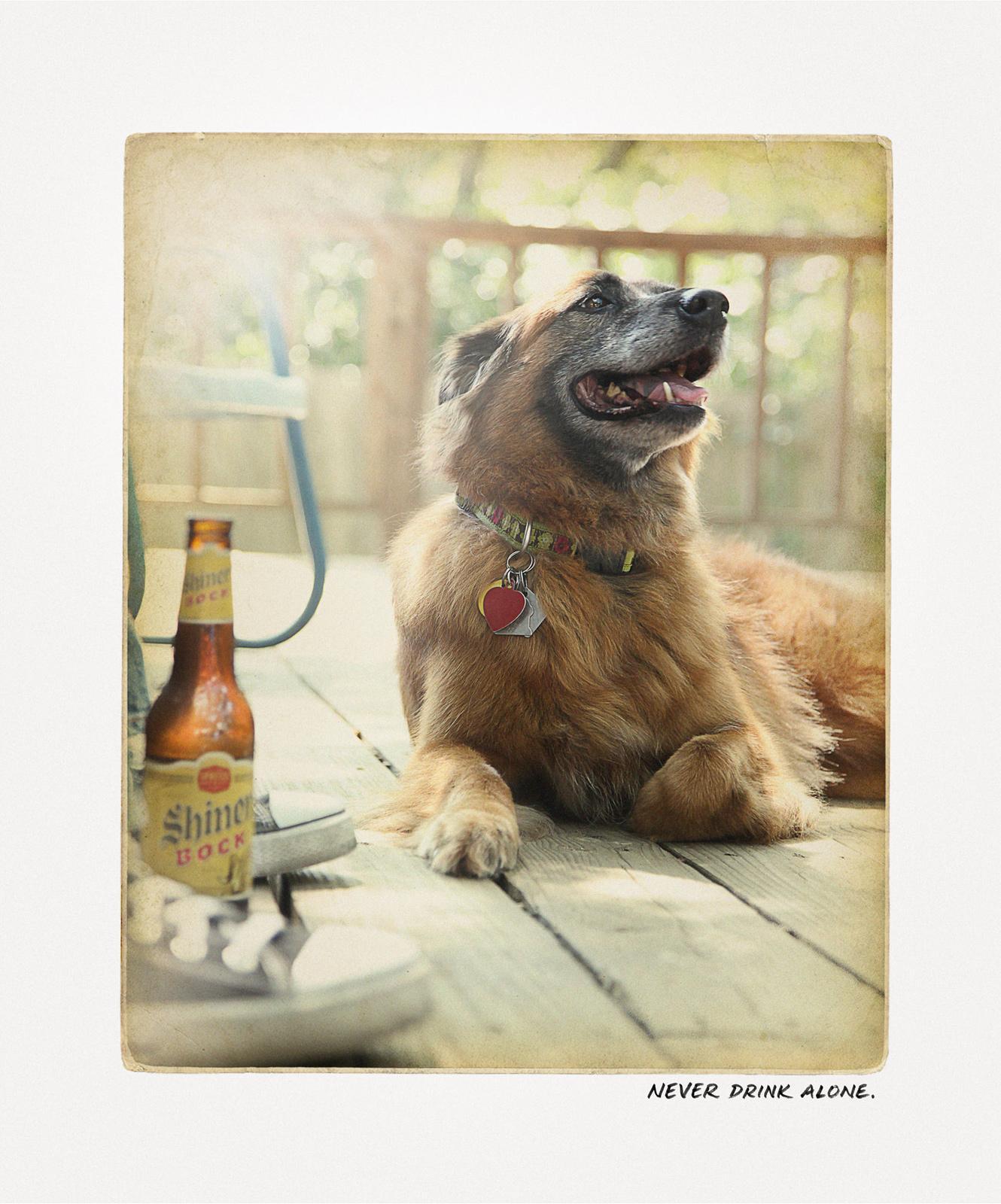 Shiner Bock Print Ad -  Dog