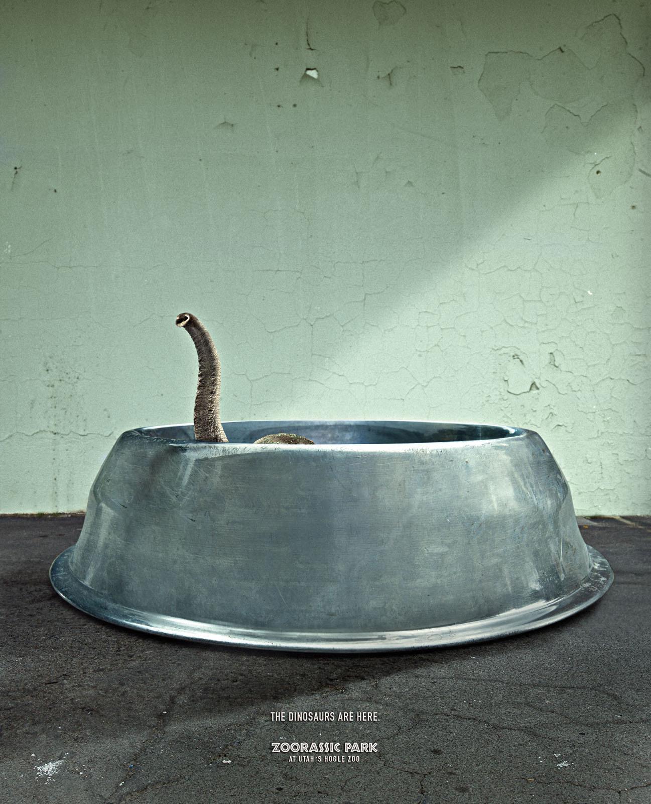 Hogle Zoo Print Ad -  Elephant