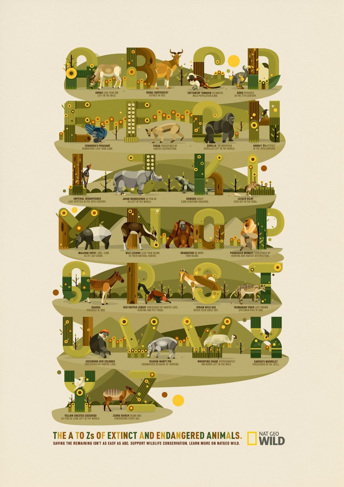 National Geographic Print Ad -  A-Z of Endangered and Extinct Wildlife