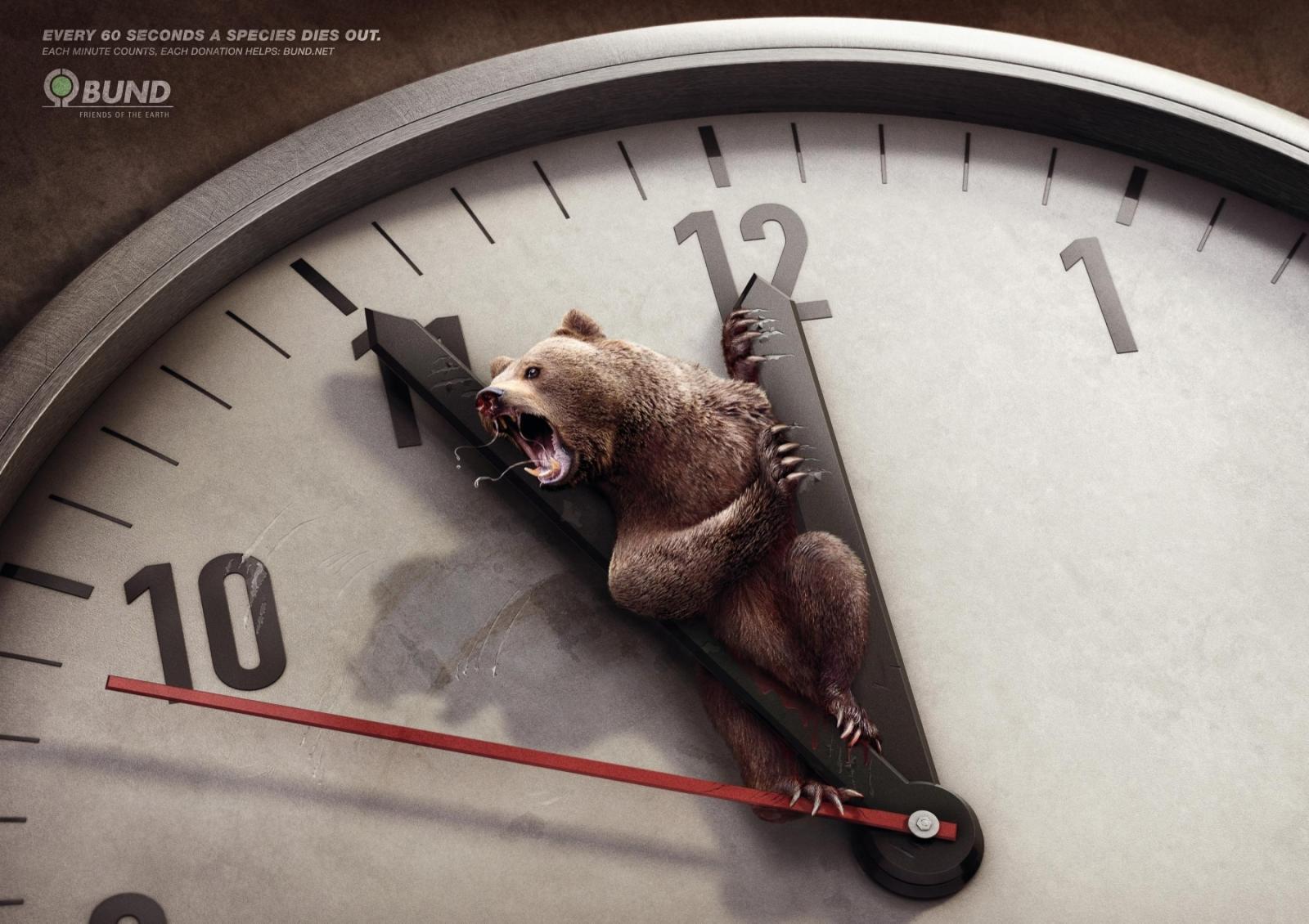 Bund Print Ad -  Brown Bear