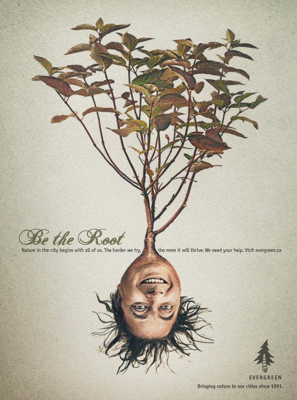 Evergreen Print Ad -  Man