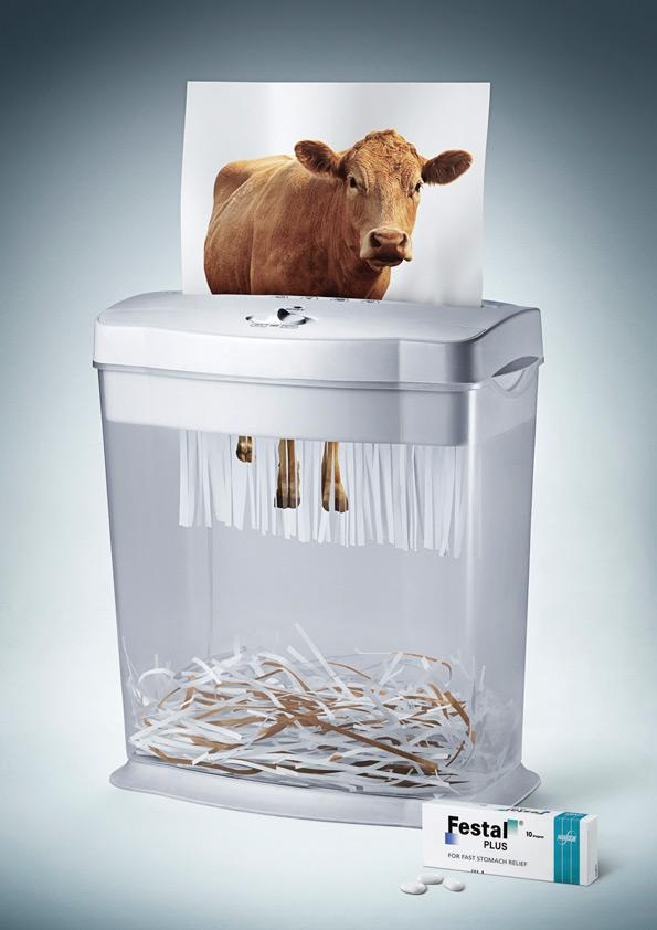 Festal Print Ad -  Beef