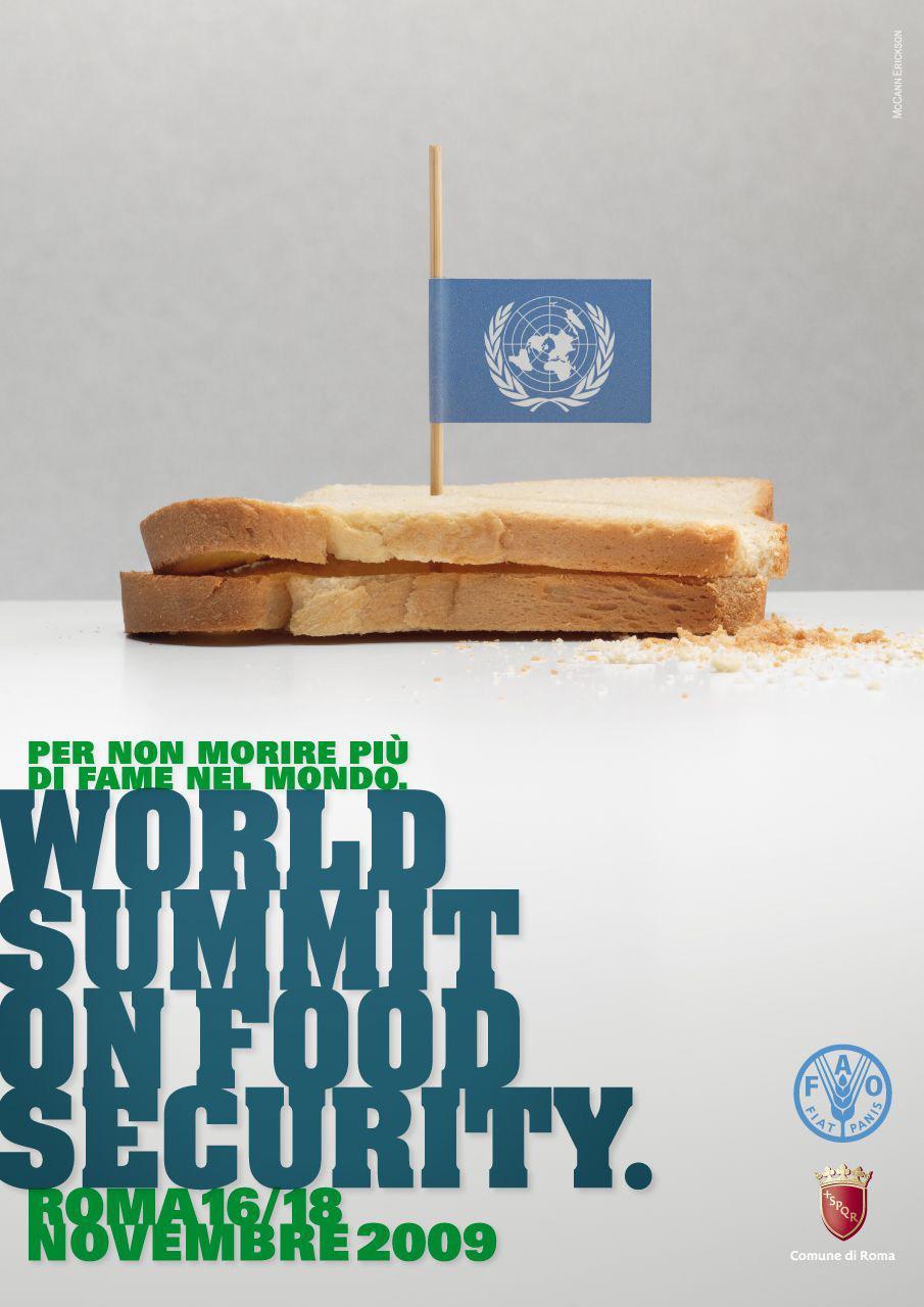 FAO Print Ad -  Flag