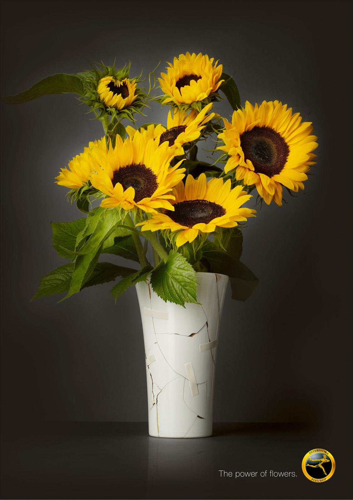 Interflora Print Ad -  Broken Vase
