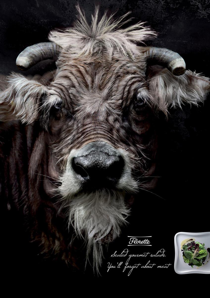 Florette Print Ad -  Bull