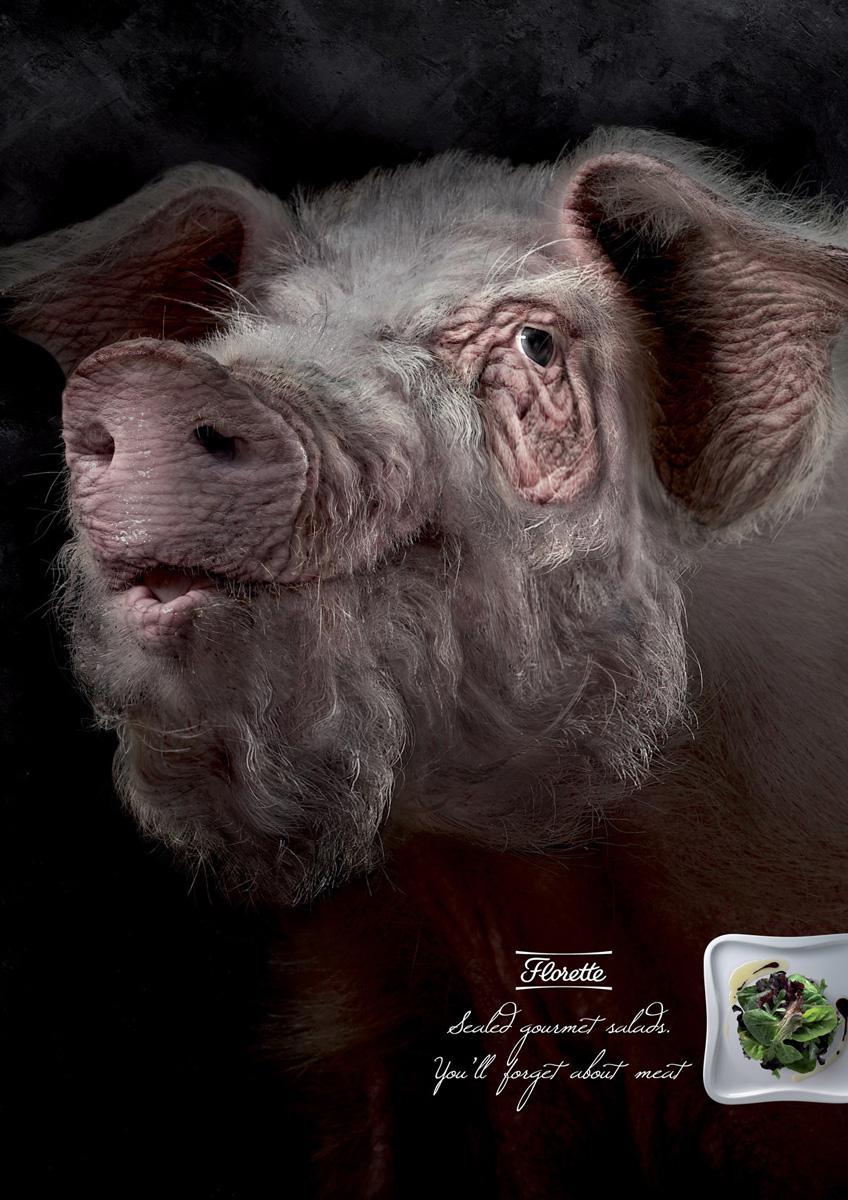 Florette Print Ad -  Pig
