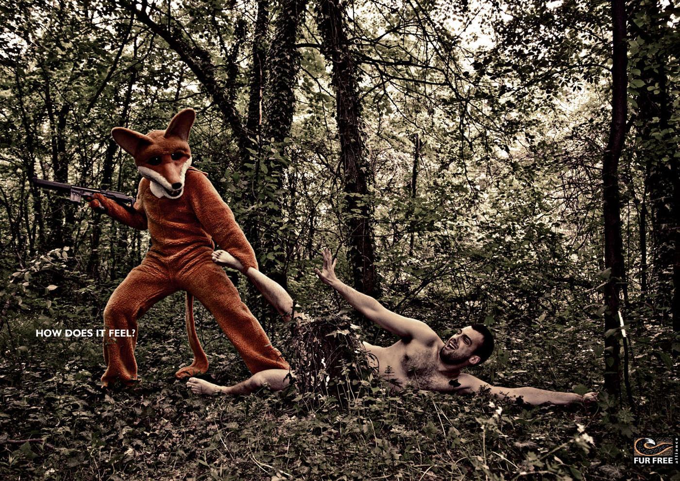 Fur Free Print Ad -  Angry fox, 2