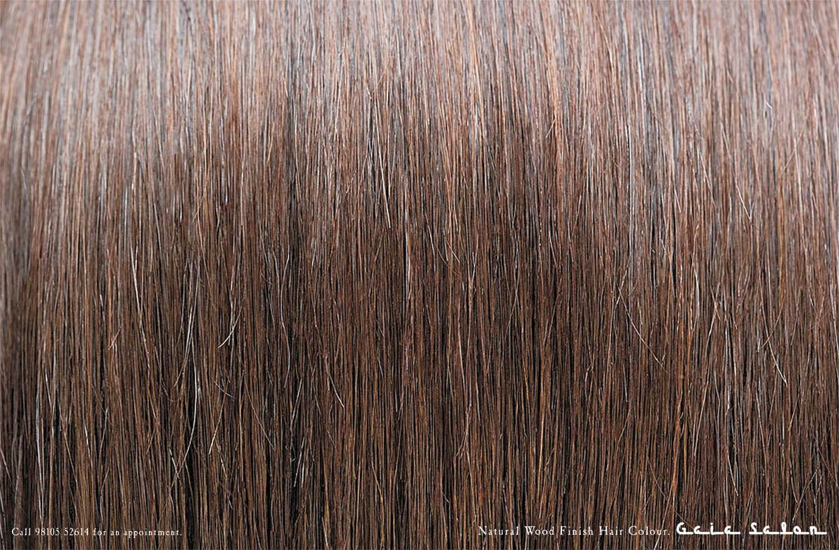Gaia Salon Print Ad -  Brown