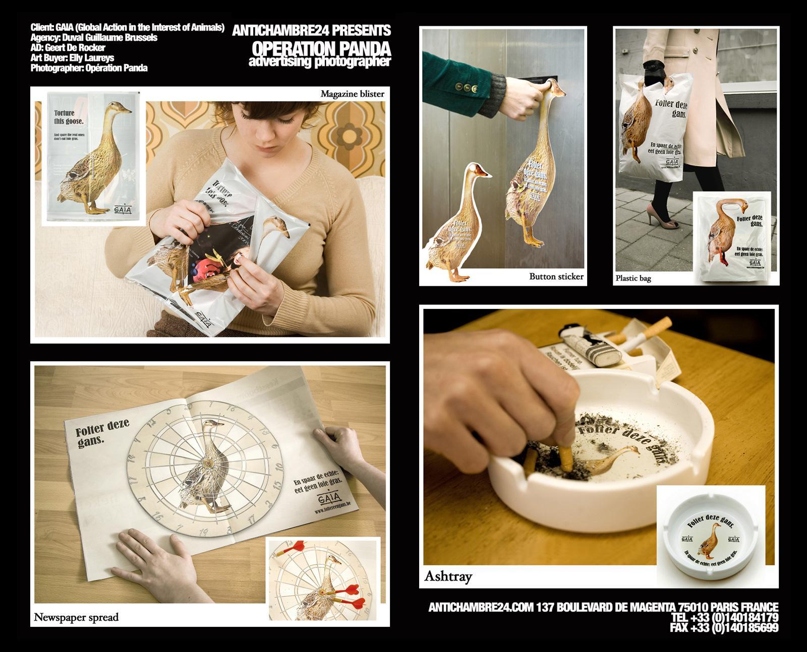 GAIA Ambient Ad -  Goose