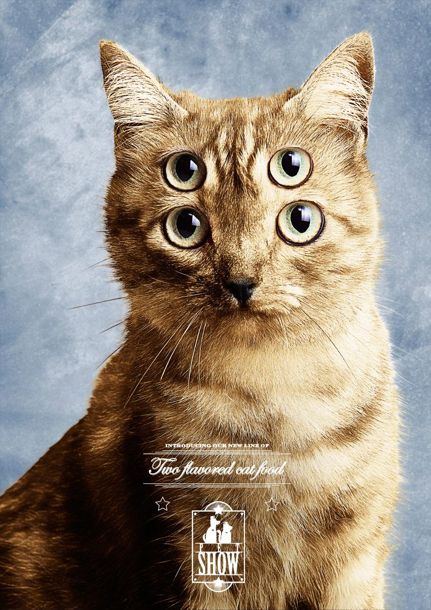 Pet Show Print Ad -  Cat, 2