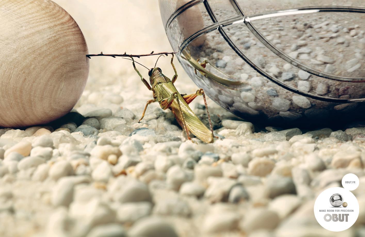 Obut Print Ad -  Grasshopper