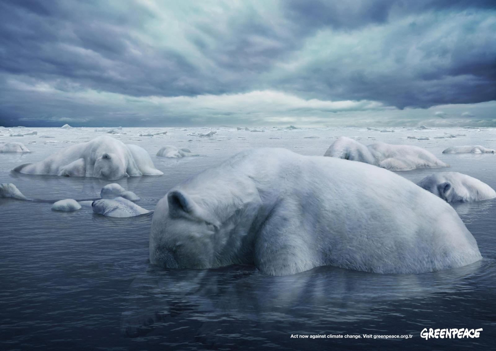 Greenpeace Print Ad -  Polar Bears