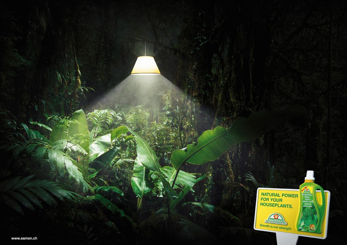 Greenworld Print Ad -  Lamp