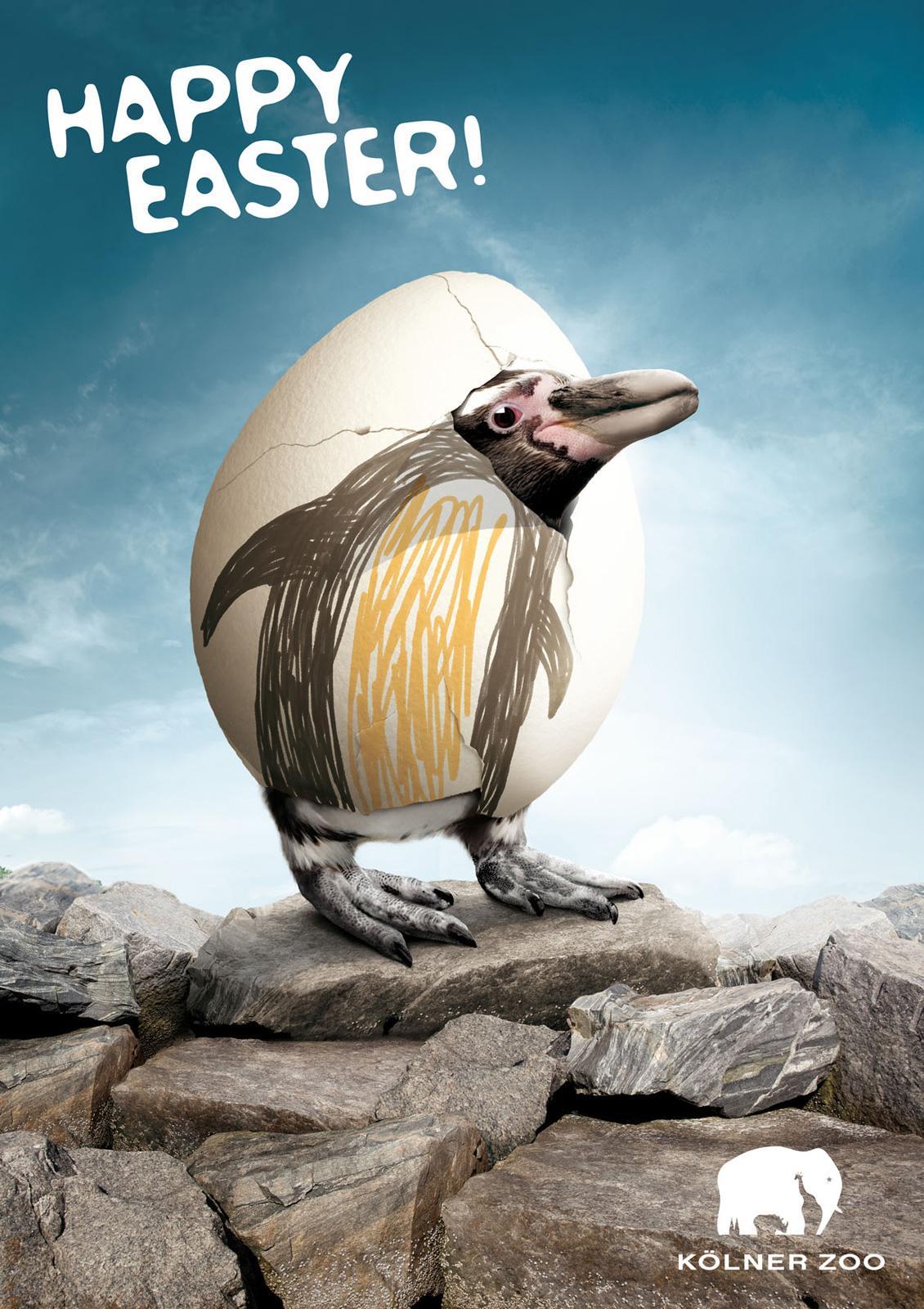 Kölner Zoo Print Ad -  Happy Easter Eggs, Penguin