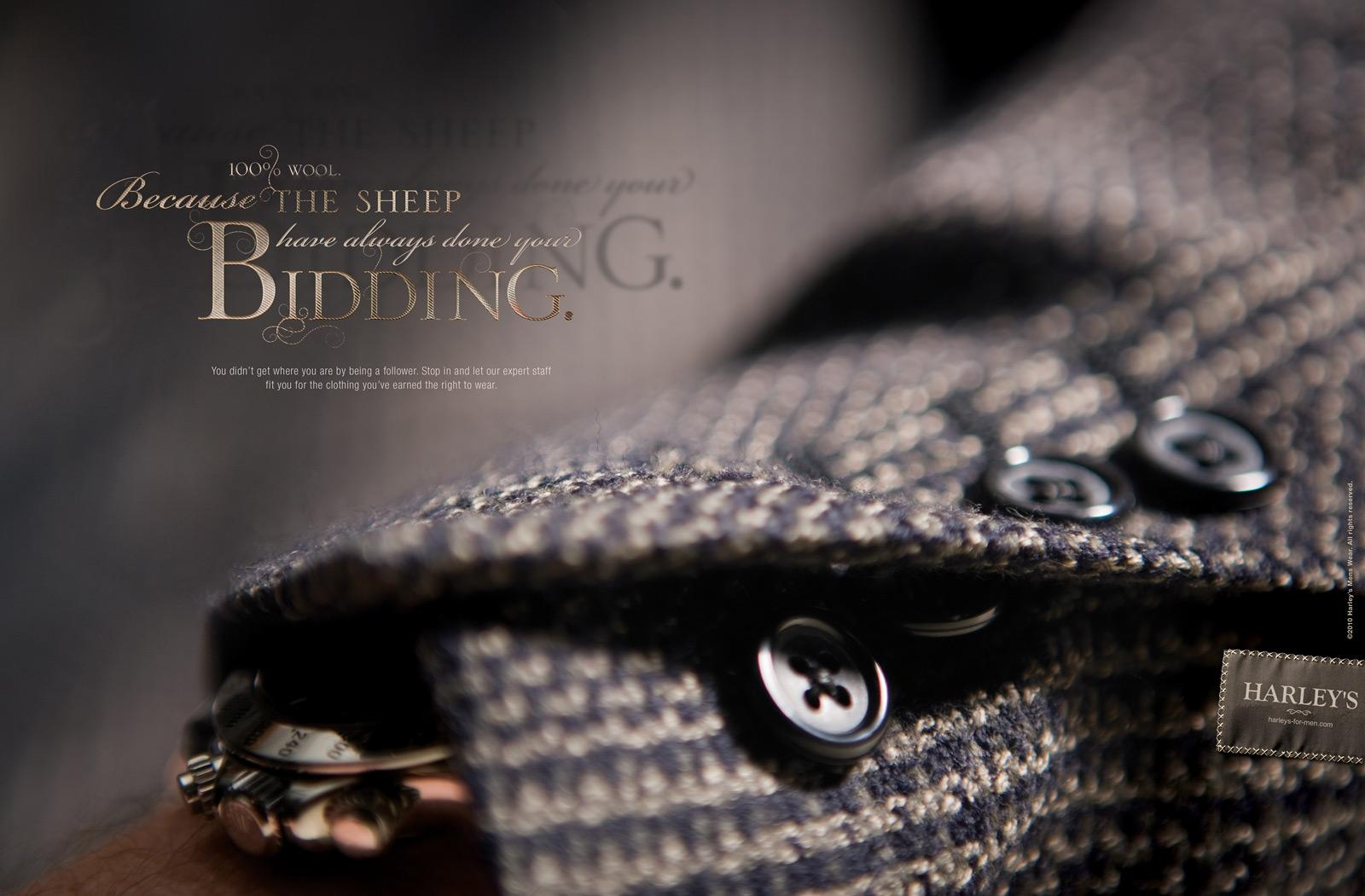 Harley's Print Ad -  Sheep