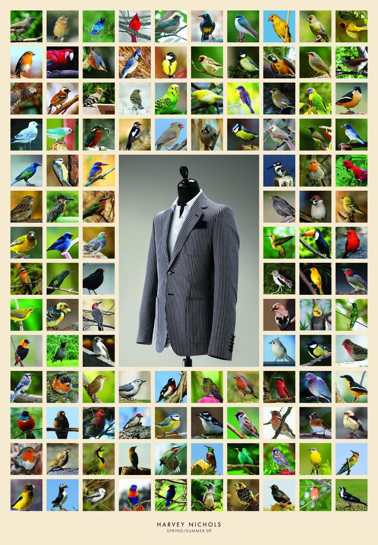 Harvey Nichols Print Ad -  Birds