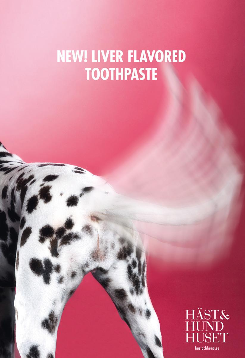 The Horse and Hound Boutique Print Ad -  Toothpaste