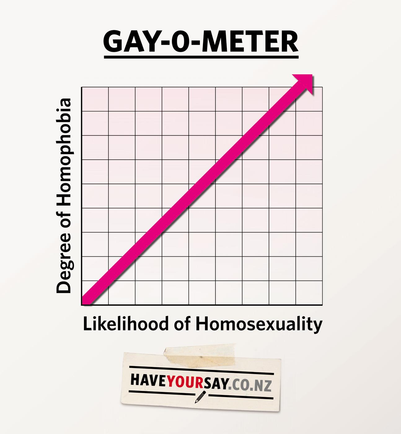 haveyoursay.co.nz Outdoor Ad -  Gay