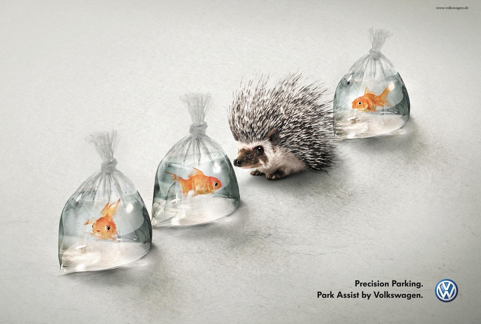 Volkswagen Print Ad -  Hedgehog and Fish
