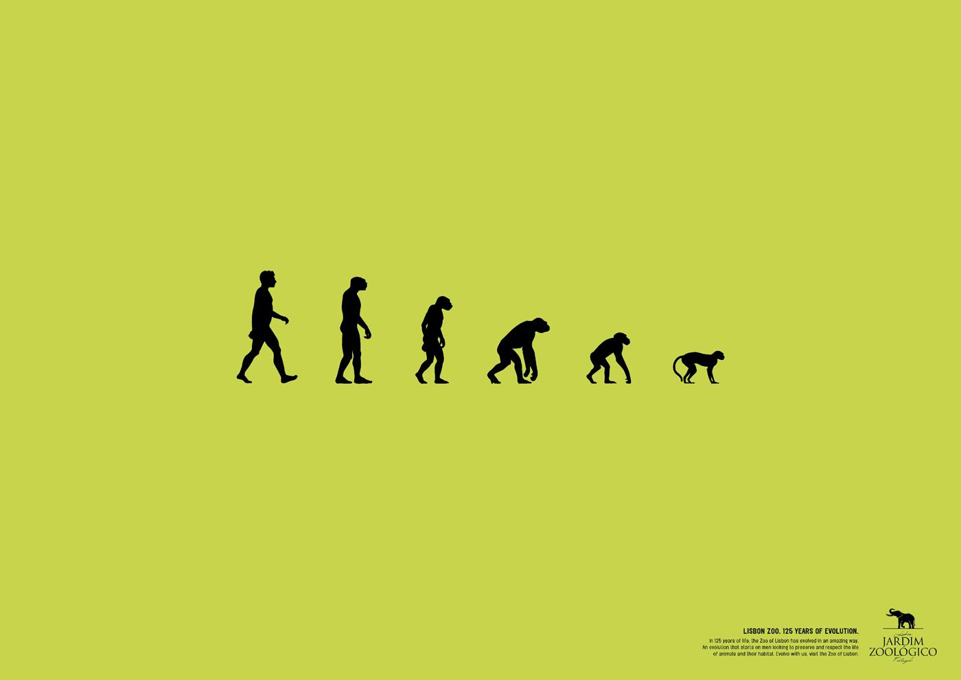 Lisbon Zoo Print Ad -  125 years of evolution, 2