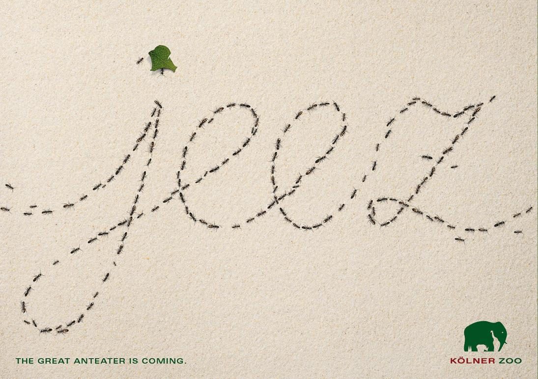 Zoo Cologne Print Ad -  The Anti-Anteater Font, Jeez