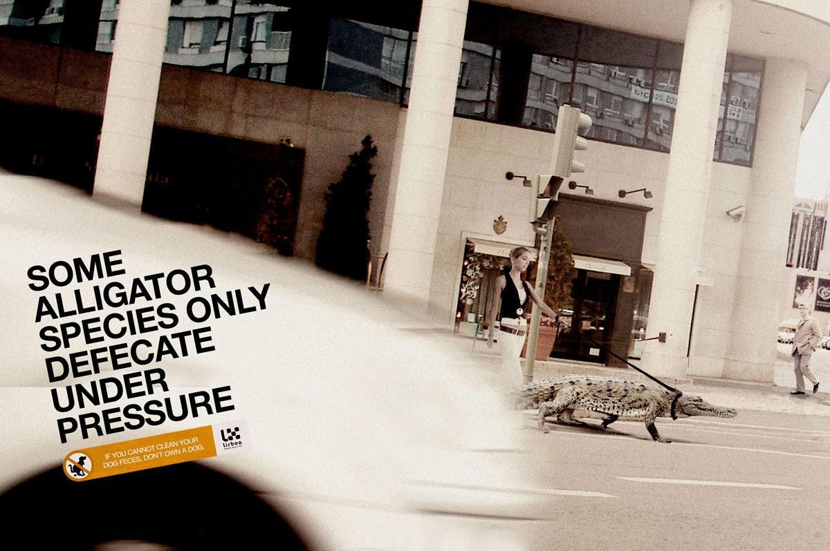 Lisbon City Council Print Ad -  Alligator