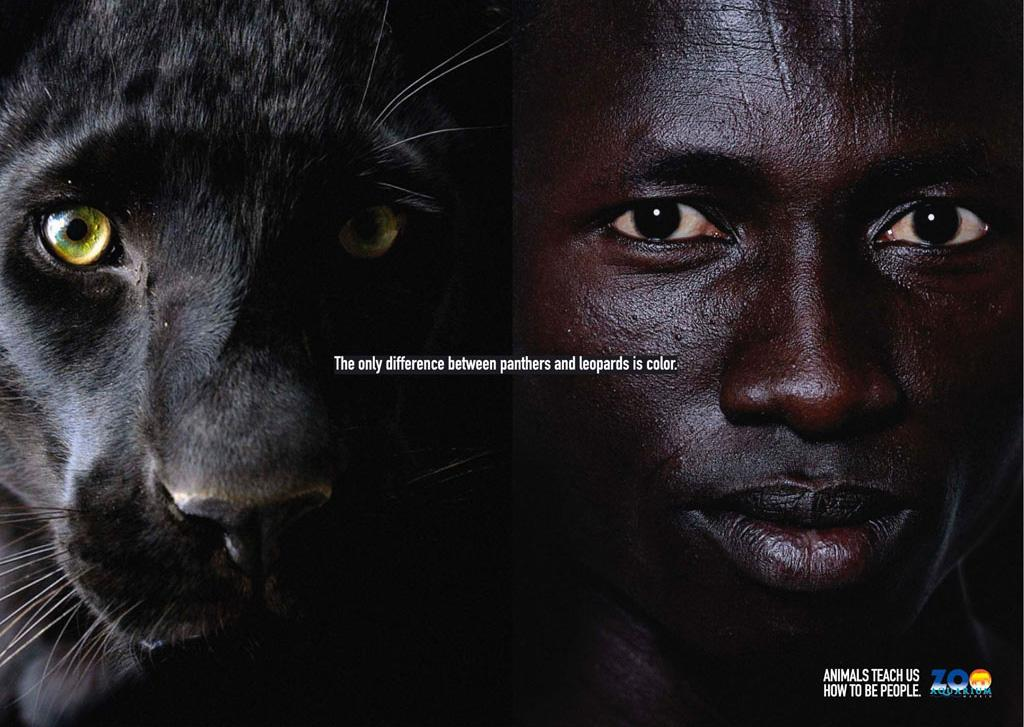 Madrid Zoo Print Ad -  Black leopard