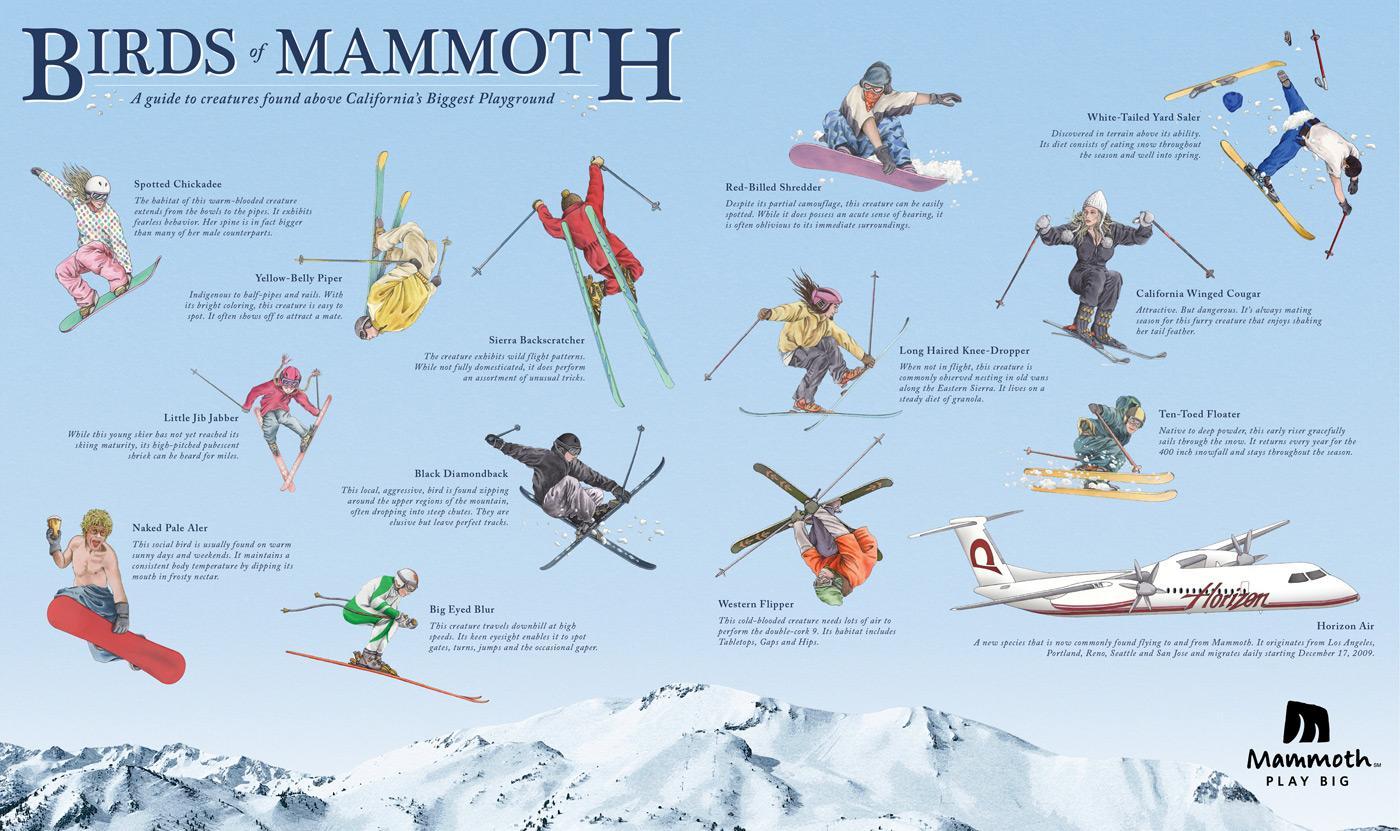 Mammoth Outdoor Ad -  Birds