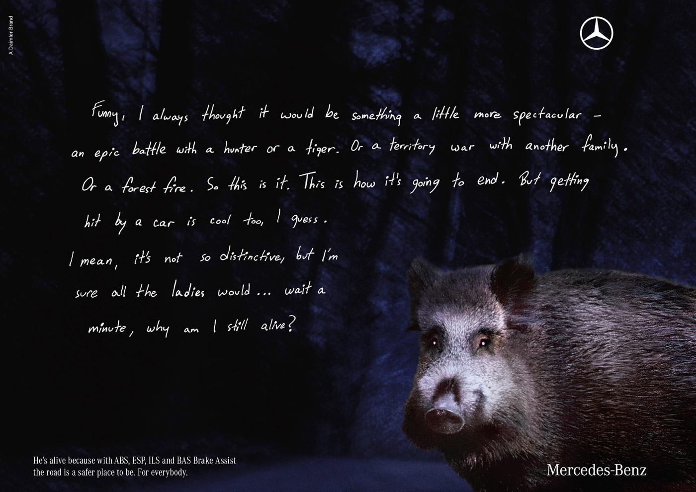 Mercedes Print Ad -  Boar