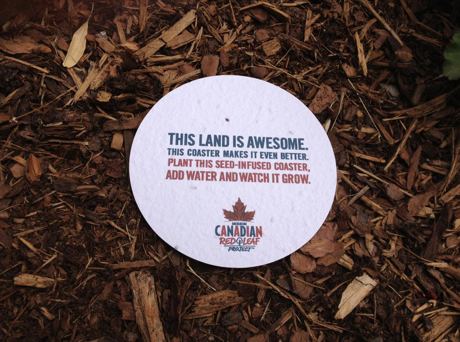 Molson Dry Direct Ad -  Seed Coaster