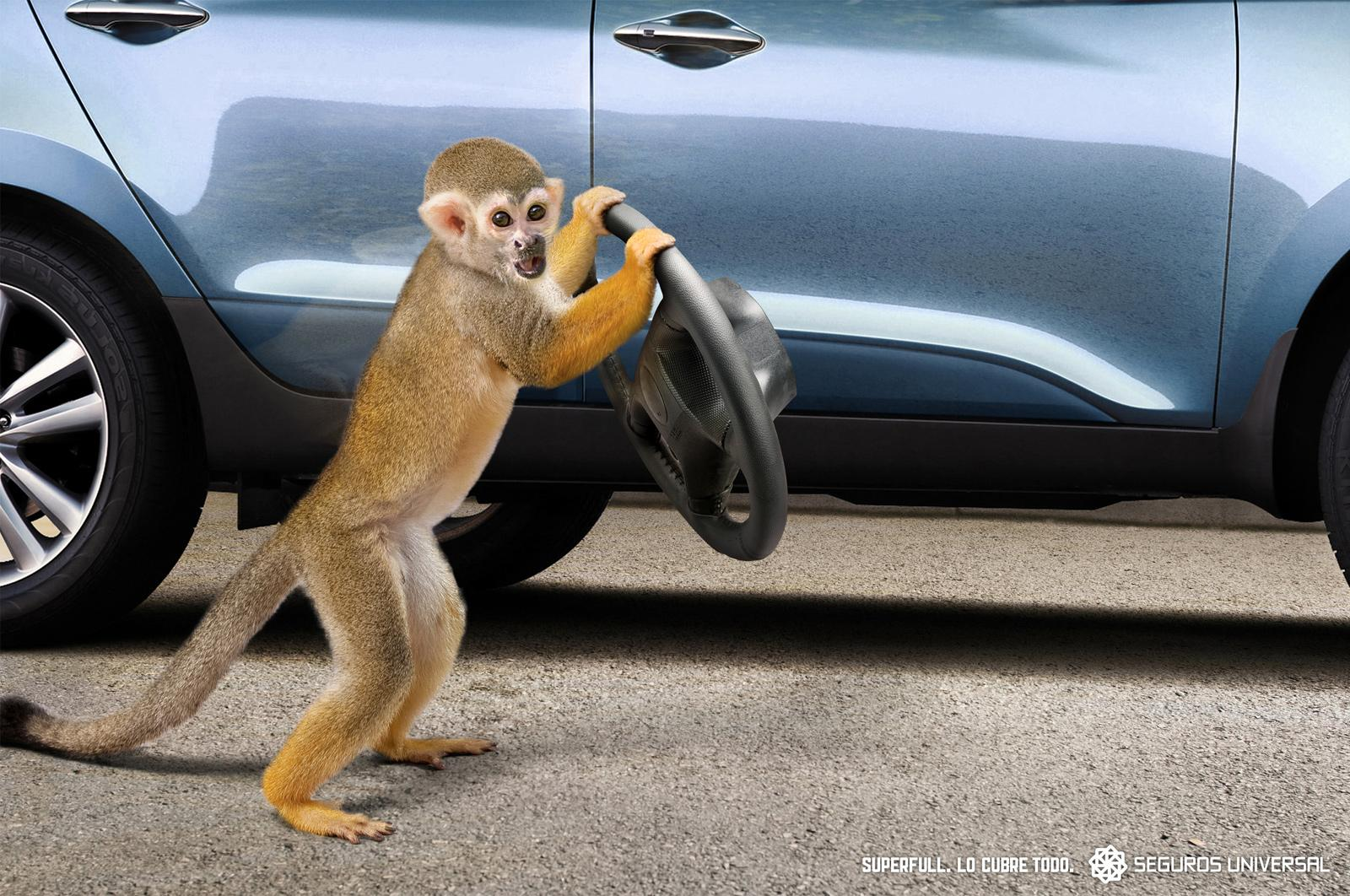 Universal Seguros Print Ad -  Monkey