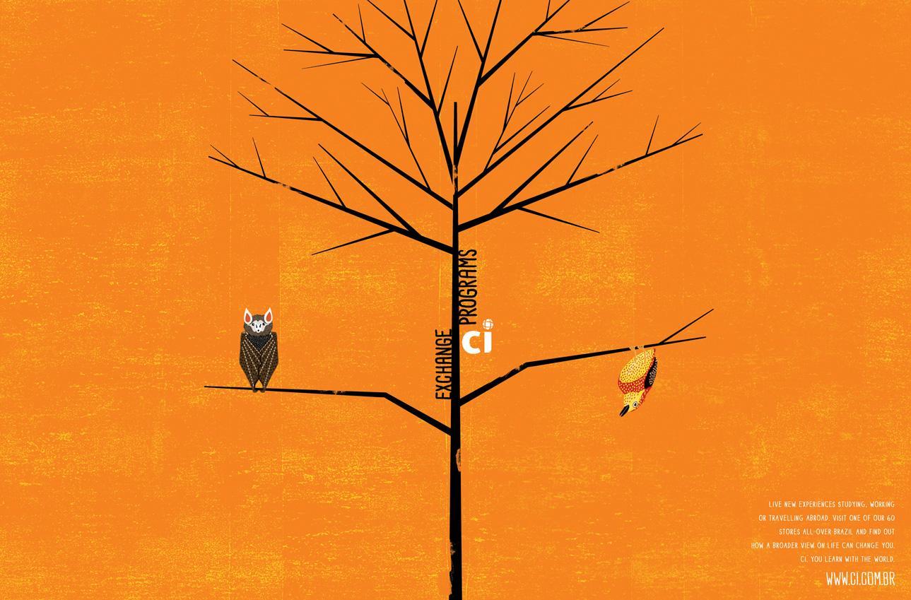 CI Print Ad -  Bird