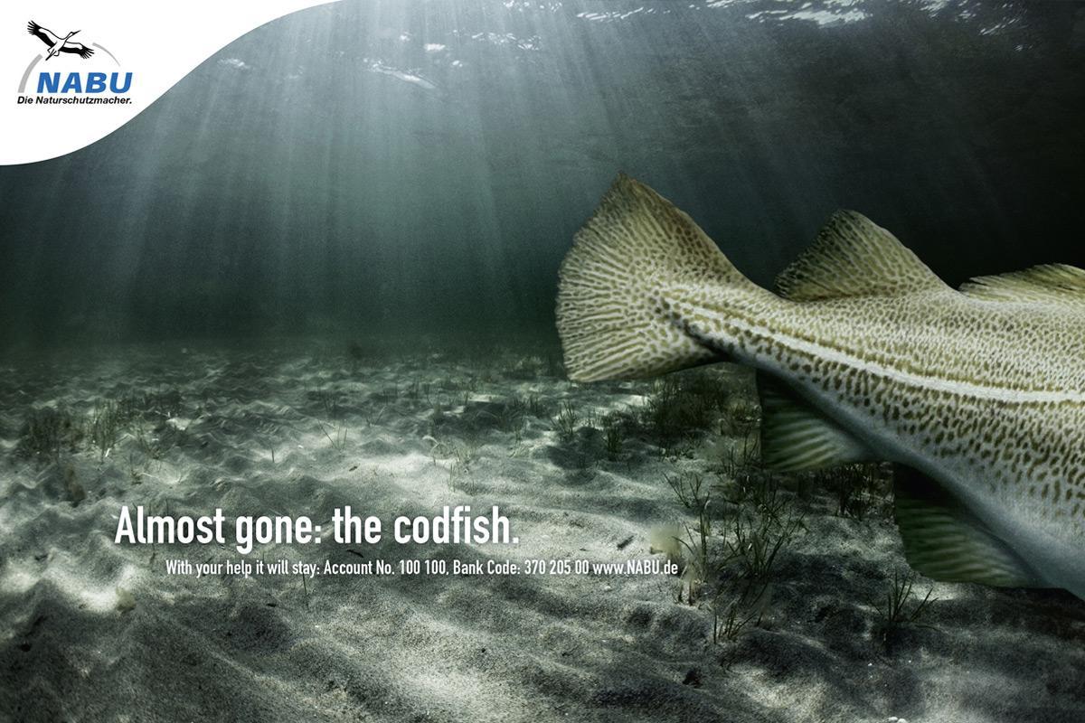 NABU Print Ad -  Cod